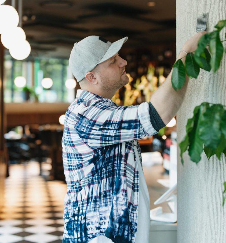 Venetial plaster in North Van at Bufala Restaurant - Commercial Interior Venetian Plaster